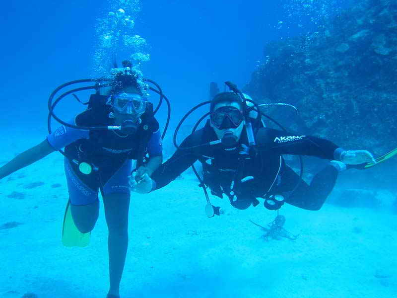The business plan of the club of scuba diving